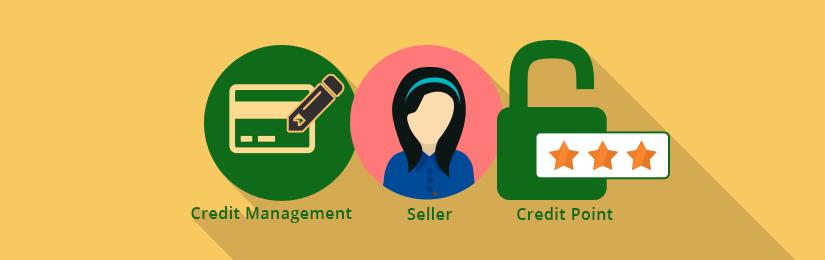 Marketplace Seller Credit Management for Magento2