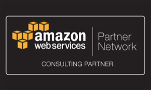 Amazon Standard Consulting Partner