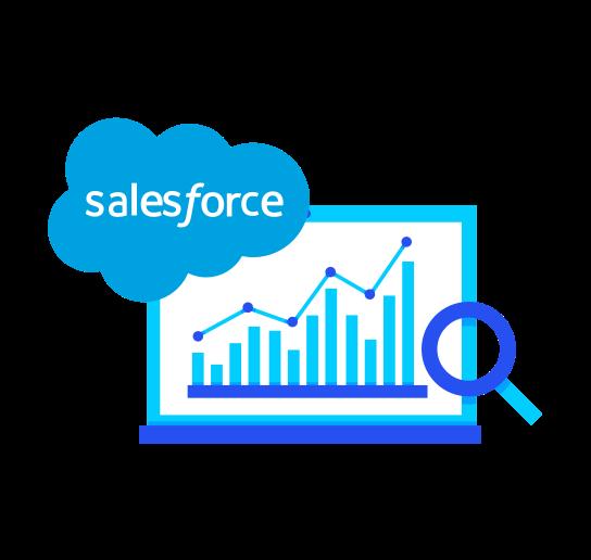 Salesforce Consultation
