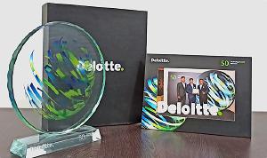 webkul-deloitte-2019-trophy